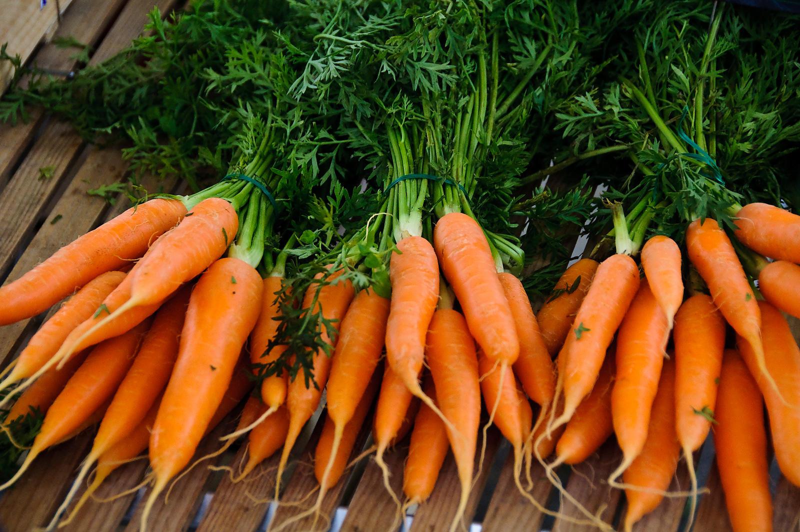 Zanahorias de todos los tamaños con los mejores